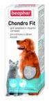 Klouby, kosti, svaly a zuby u psů